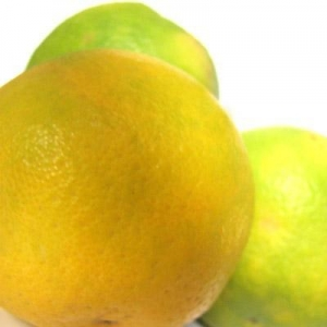 China Natural Food Color Natural Citrus on sale