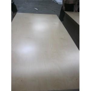 China UV Coated Birch Plywood on sale