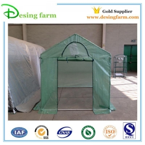 China poly-tunnel-greenhouse-for-sale on sale