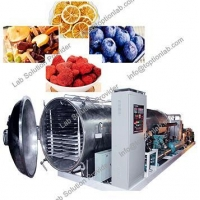 Food Freeze Dryers Fruit Drying Machine Health Care Products Freeze Dryer Supplier