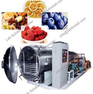 China Food Freeze Dryers Fruit Drying Machine Health Care Products Freeze Dryer Supplier on sale