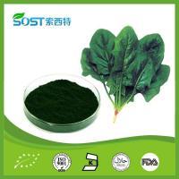 China Food Additives Chlorophyll on sale