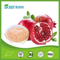 Fruit Powder Pomegranate Powder