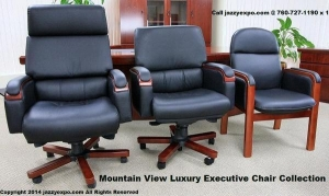 China Mountain View Luxury Executive Chair Collection on sale