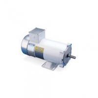Electric Motors LEESON Electric Motor - 1/2 HP - 1750 RPM - 90V - DC - Washgaurd
