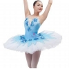 China Classical ballet tutu Item No.: B17011 New professional ballet tutu for sale
