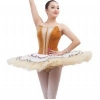 China Classical ballet tutu Item No.: B17012 New professional ballet tutu for sale