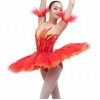 China Classical ballet tutu Item No.: B17008 New professional ballet tutu for sale