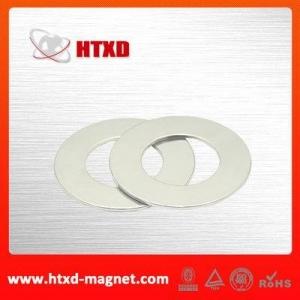 China Large cheap radial ring neodymium magnet on sale