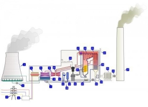 China Biomass fired Thermal power station on sale