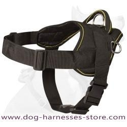 China Beagle dog harness - Nylon dog harness for tracking/pulling on sale