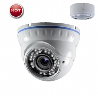 Analog Cameras VD-IBV (Analog)