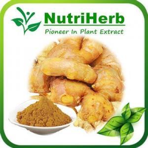 China Natural Ginger Powder,Dried Ginger,Ground Ginger,Powdered Ginger,Ginger Root Powder on sale