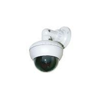 DLX-VPB Vandal Proof Camera