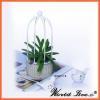 China new design popular round shape concrete garden bonsaic flower pot for sale