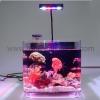 China Aquaponics Fish Tank for sale