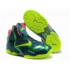 China Nike LeBron 11 T Rex for sale