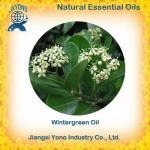 Natural Flavors & Fragrances Wintergreen oil