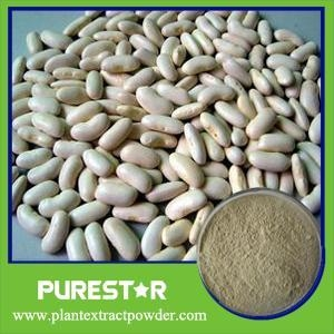 China White Kidney Bean Extract,Phaseolin on sale