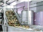 China Mango Pulp Processing Line on sale