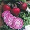 China Sell seeds Beetroot Tonda Di Clogga for sale