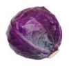 China Sell seeds of Cabbage, red, Black head for sale