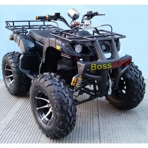 China Adult Electric ATVBSE3000-2(Adult Electric ATV) on sale