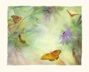 China Gulf Fritillary Butterfly Life Cycle Watercolor Print AR100911x14 on sale