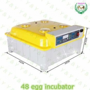 China Multifunctional Automatic 48 eggs mini incubator JN8-48 poultry incubator machine for sale on sale