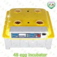 JANOEL Series JN8-48 cheap egg incubator 48 eggs hatcher incubator for quail eggs for sale