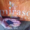 China Mirasol seed - seeds of sunflower resistant to Broomrape for sale