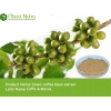China Green Coffee Bean Extract - Chlorogenic Acids 50% for sale