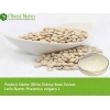 China White Kidney Bean Extract - -Amylase Inhibitors for sale