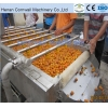 China hairbrush fruit and vegetable washing machine for sale
