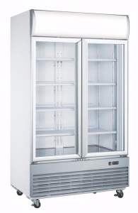 China Double Glass Door Display Freezer 1000 Liter LD-1000F commercial cooler on sale