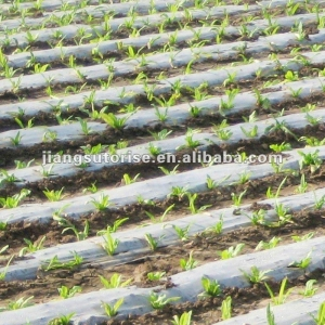 China PLA mulching film on sale