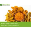 China Turmeric Extract - Curcumin 95% for sale
