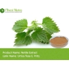 China Nettle Extract - Nettle Extract for sale