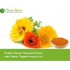 China Marigold Extract - Lutin 20% for sale