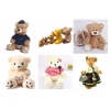 China Teddybear for sale