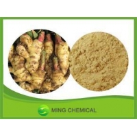 China Powdered ginger/Natural ginger Powder Wholesale on sale