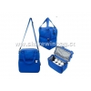 China cooler bag for frozen food for sale