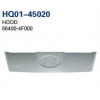 China H100 2004 Hood, Bonnet (66400-4F000) for sale
