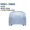 China Accent 2000 Hood, Bonnet (66400-25300) for sale
