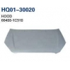 China Getz 2006 Hood, Bonnet (66400-1C510) for sale