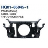 China I20 2009 Radiator Support, Water Tank Frame, Panel (64101-1J000, 64101-1J200) for sale