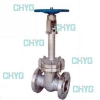 China American forged steel cryogenic valves for sale
