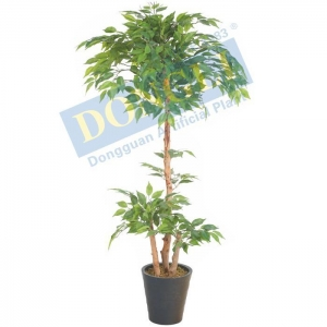 China Artificial Ficus Tree on sale