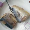 China Canned Chub Tuna Jack Mackeral in Brine for sale
