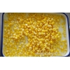 China Canned Sweet Corn for sale
